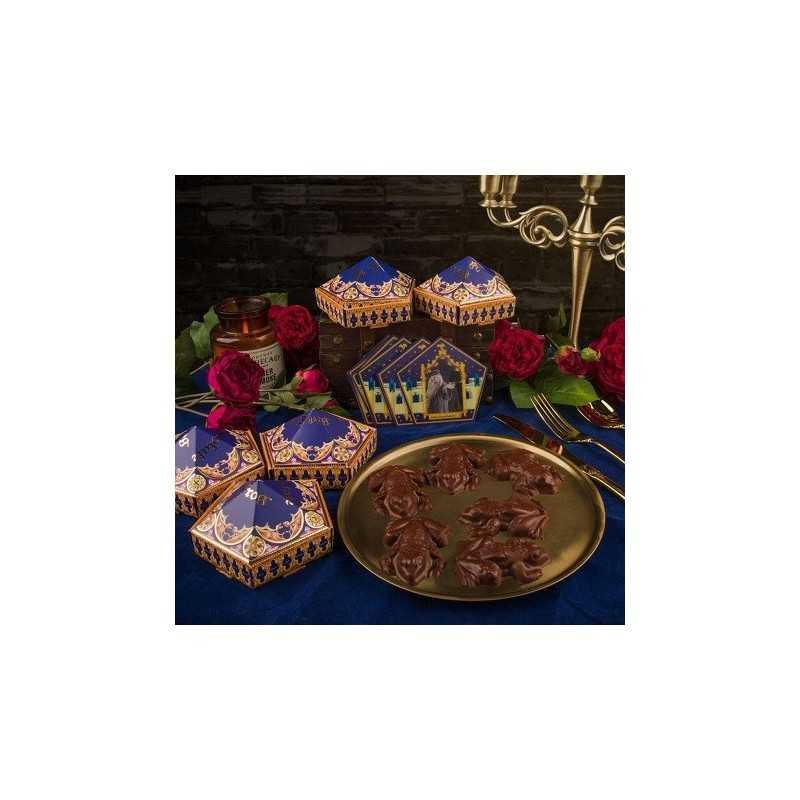 Moule à Chocolat Grenouille Harry Potter Carte de Collection