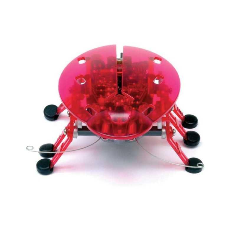 Hexbugs insectes robotique